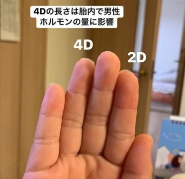 2D-4D
