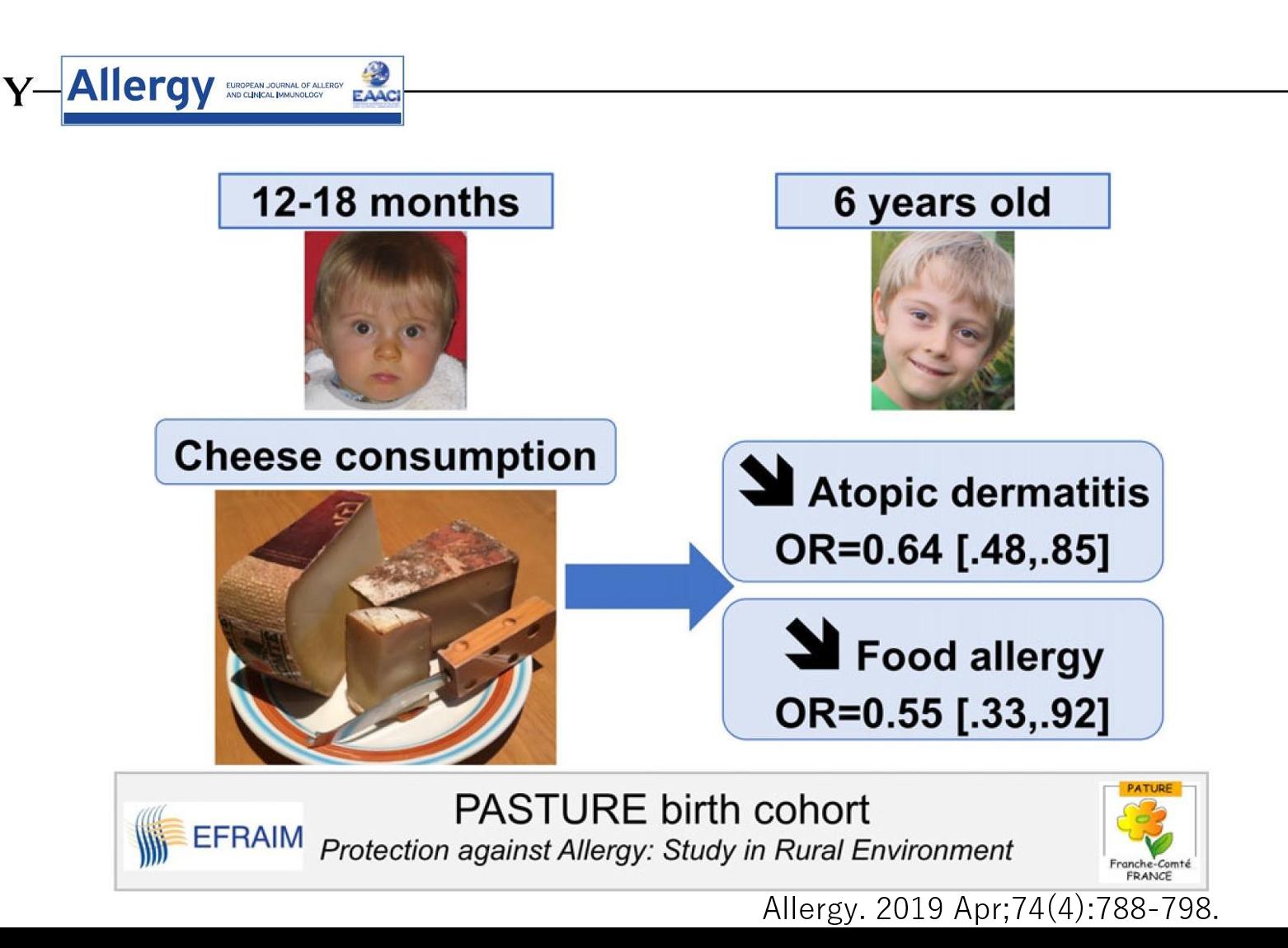 ナチュラルチーズとアレルギー疾患